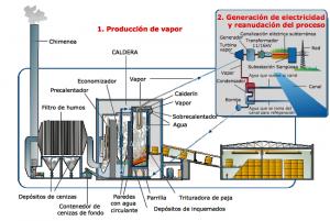 energia electrica mediante biomasa